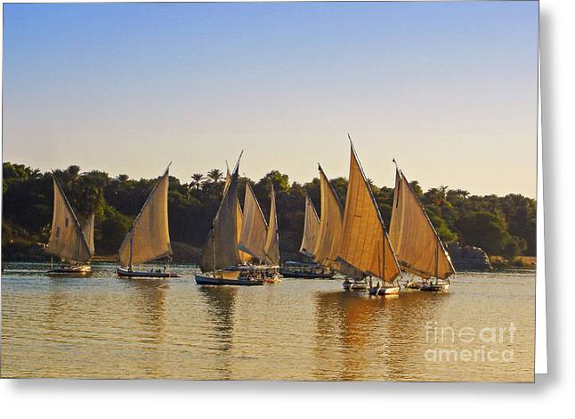 Mideast Greeting Cards - Faluccas on the Nile Greeting Card by Mary Machare