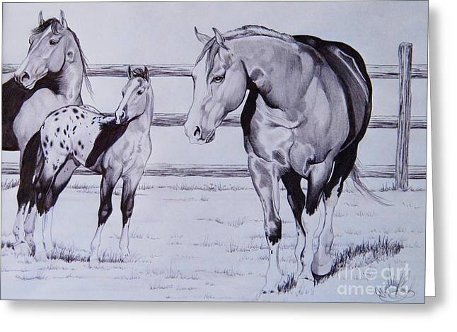 Quarter Horses Drawings Greeting Cards - Family Greeting Card by Cheryl Poland