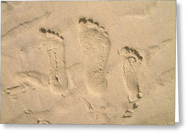 Cape Cod Mass Greeting Cards - Family of Three Footprints Greeting Card by Sven Migot