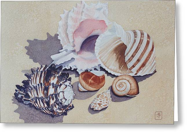 Seashell Picture Paintings Greeting Cards - Family Portrait Greeting Card by Eve Riser Roberts