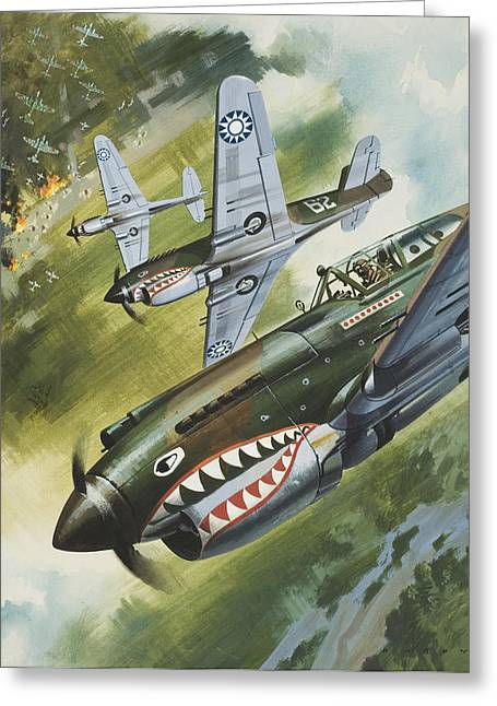 Tiger Illustration Greeting Cards - Famous Aircraft and their Pilots Greeting Card by Wilf Hardy
