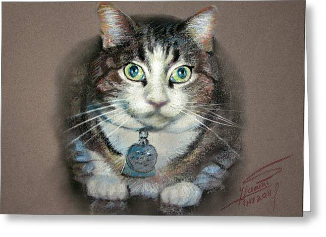 Domestic Cat Greeting Cards - Fancy Greeting Card by Ylli Haruni