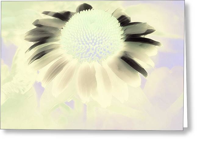 Muted Mauve Greeting Cards - Fantasy Daisy IV Greeting Card by Karen Lewis