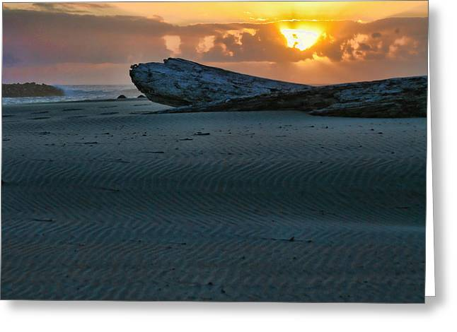 Sand Patterns Greeting Cards - Farewell Greeting Card by Bonnie Bruno