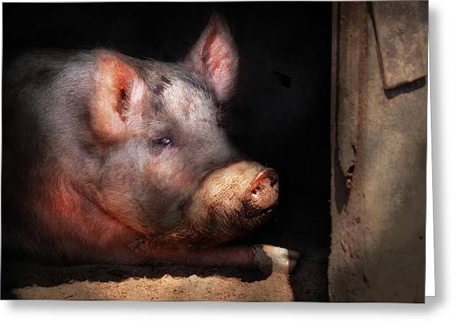 Present For You Greeting Cards - Farm - Pig - Piggy number two Greeting Card by Mike Savad