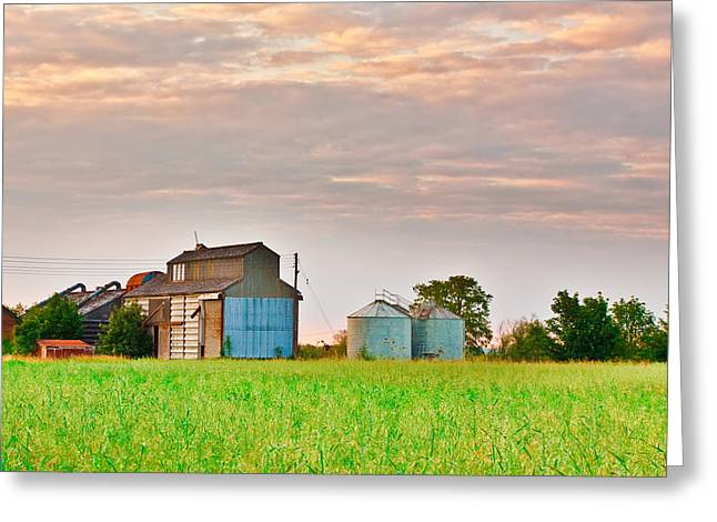 Red Roofs Greeting Cards - Farm buildings Greeting Card by Tom Gowanlock