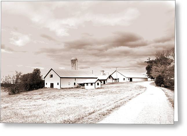 Infared Photography Greeting Cards - Farm Land Greeting Card by Barry Jones