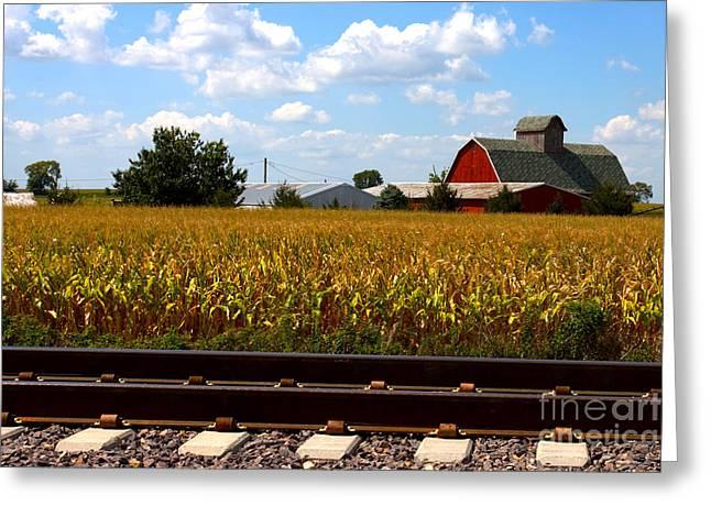 Alan Look Greeting Cards - Farm Life Scene 4 Greeting Card by Alan Look
