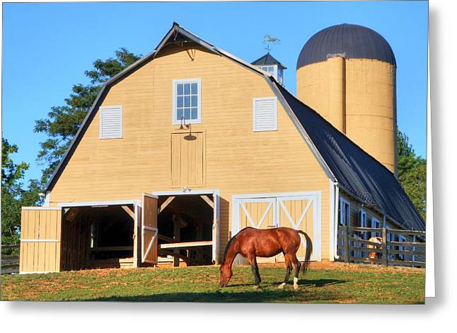 Old Greeting Cards - Farm Greeting Card by Mitch Cat