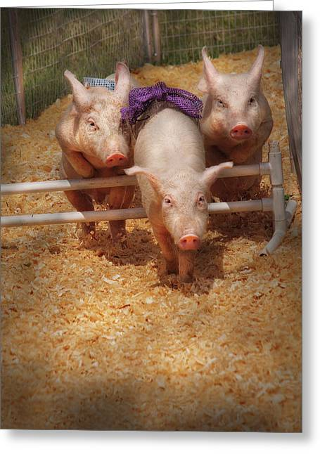 Hurdles Greeting Cards - Farm - Pig - Getting past hurdles Greeting Card by Mike Savad