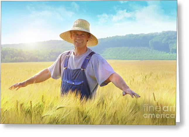 Overalls Greeting Cards - Farmer checking put his crop of wheat Greeting Card by Sandra Cunningham