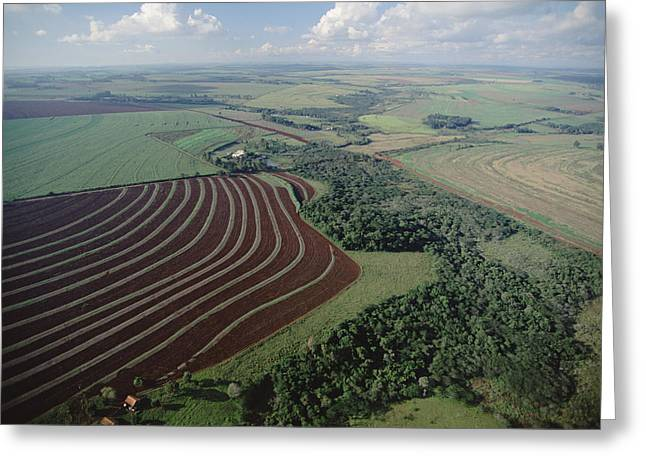 Contour Farming Greeting Cards - Farming Region With Forest Remnants Greeting Card by Claus Meyer