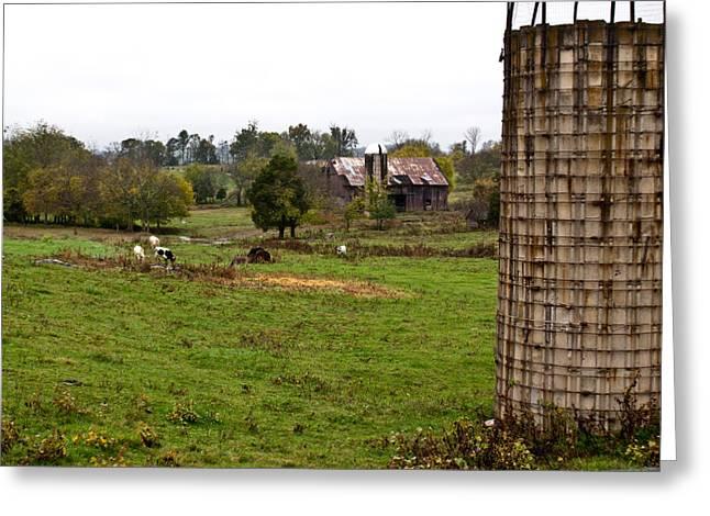 Outbuildings Greeting Cards - Farmland Greeting Card by Douglas Barnett