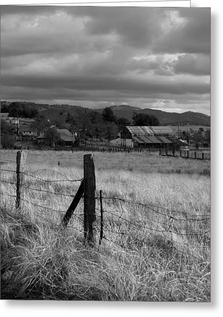 Fence Posts Greeting Cards - Farmland Fence post - Black and White Greeting Card by Peter Tellone
