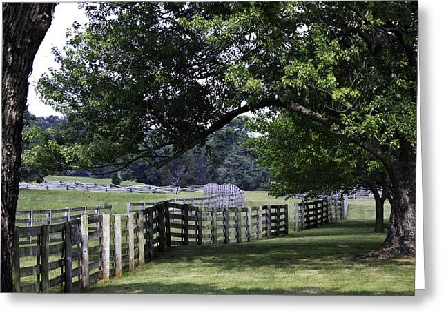 Farmland Shade Appomattox Virginia Greeting Card by Teresa Mucha