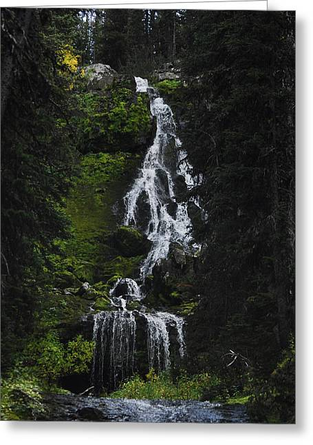 Arlyn Petrie Greeting Cards - Favorite Falls Greeting Card by Arlyn Petrie
