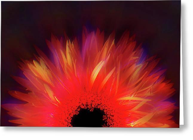 Feathered Floral Greeting Card by Li   van Saathoff