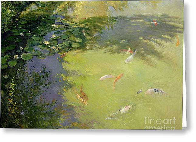 Fish Pond Greeting Cards - Featherplay Greeting Card by Timothy Easton