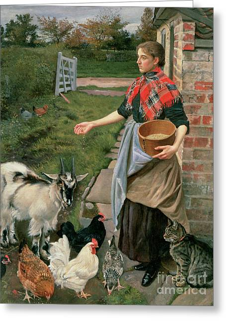 Farm Cat Greeting Cards - Feeding the Chickens Greeting Card by William Edward Millner