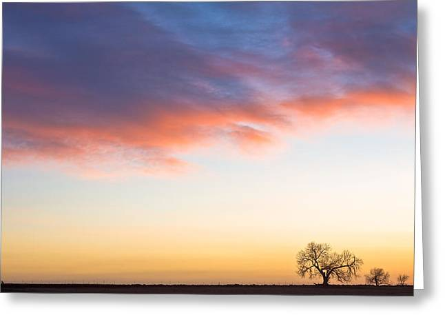 Feeling Small Greeting Card by James BO  Insogna