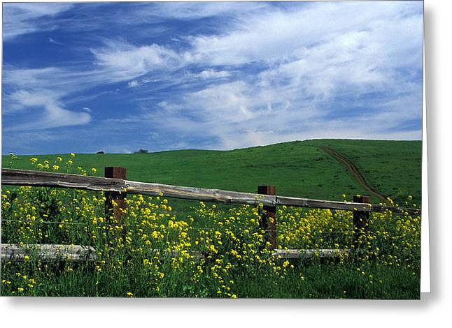 Landscape Framed Prints Greeting Cards - Fence and Flowers Greeting Card by Kathy Yates