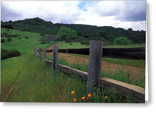 Landscape Framed Prints Greeting Cards - Fence and Poppies Greeting Card by Kathy Yates