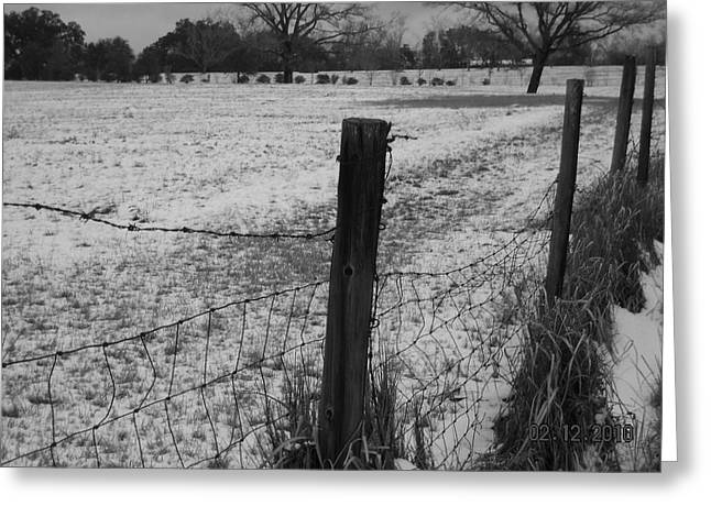 Fence And Snow Greeting Card by Floyd Smith
