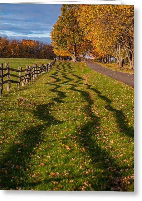 Fence Greeting Card by Guy Whiteley