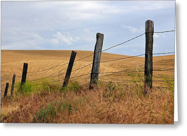 Barn Pen And Ink Photographs Greeting Cards - Fence Line Country Road Greeting Card by Athena Mckinzie