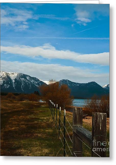 Willow Lake Greeting Cards - Fence Line Greeting Card by Mitch Shindelbower
