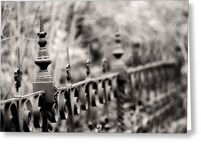 Fence Photographs Greeting Cards - Fence Line Greeting Card by Rebecca Cozart