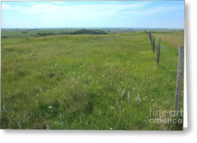 Fence On The Alberta Prairie Greeting Card by Jim Sauchyn