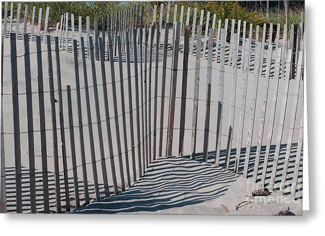 Fence Patterns II Greeting Card by Andrea Simon