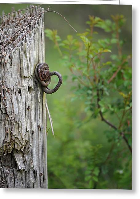 Old Fence Post Greeting Cards - Fence Post Greeting Card by Brian Mollenkopf