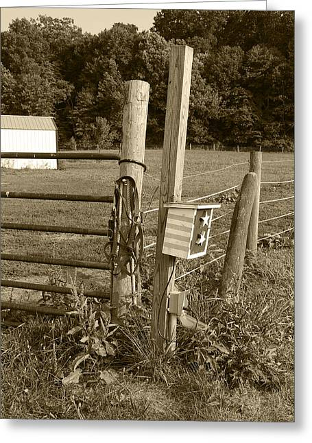 Country Scenes Greeting Cards - Fence Post Greeting Card by Jennifer Lyon