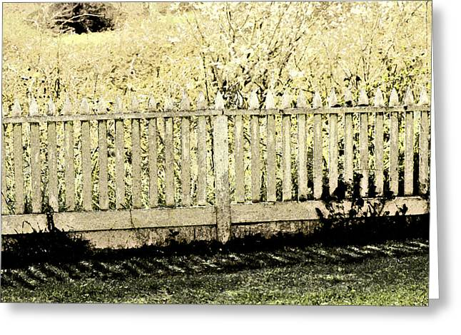 Pioneer Homes Greeting Cards - Fenced In Greeting Card by Bonnie Bruno