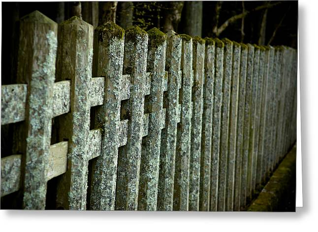 Wooden Fence Greeting Cards - Fenced In Greeting Card by Sebastian Musial