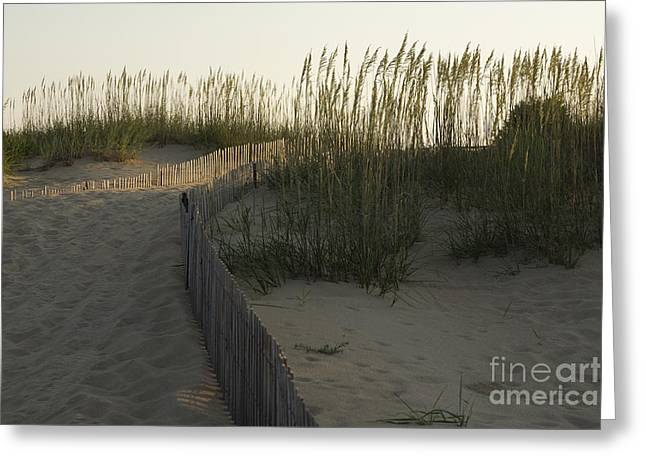 Virginia Beach Greeting Cards - Fenced Off Sand Dunes Greeting Card by Roberto Westbrook