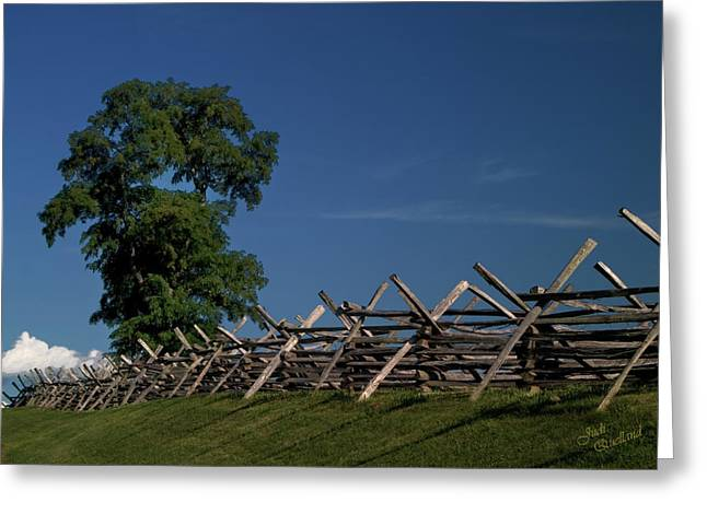 Split Rail Fence Greeting Cards - Fenceline at Bloody Lane Greeting Card by Judi Quelland
