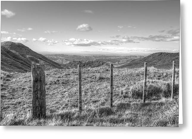 Fenceline Greeting Cards - Fenceline Greeting Card by Les Cunliffe