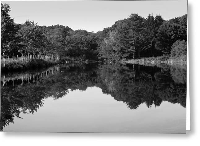 Fenns Pond Greeting Card by Karol Livote