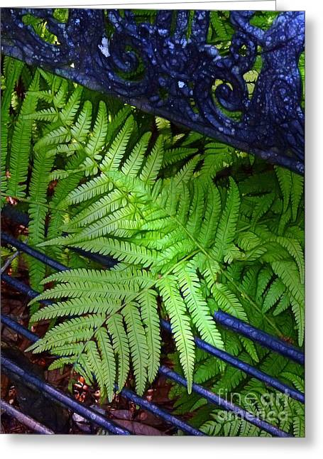 Bench Prison Greeting Cards - Ferns Escaping Greeting Card by Judi Bagwell
