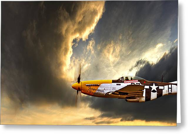 Flying Planes Greeting Cards - Ferocious Frankie Greeting Card by Meirion Matthias