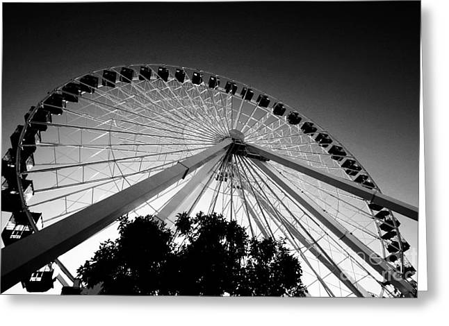 Leda Photography Greeting Cards - Ferris Wheel Greeting Card by Leslie Leda