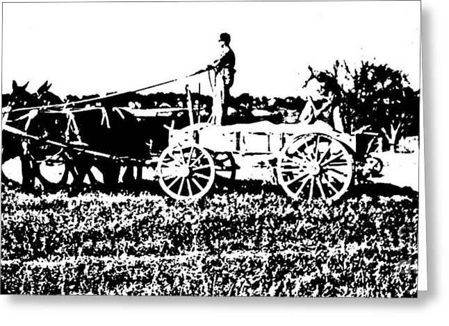 Fertilizing The Field Litho Greeting Card by Padre Art