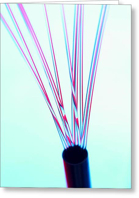 Electronics Industry Greeting Cards - Fibre Optics Greeting Card by Tek Image