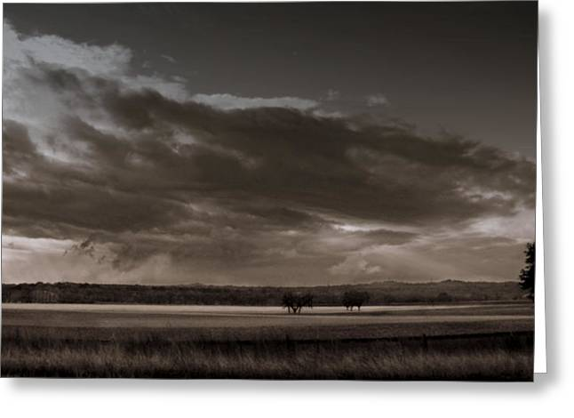 Black White Photography Prints Greeting Cards - Field at Sunrise Greeting Card by Karen Musick