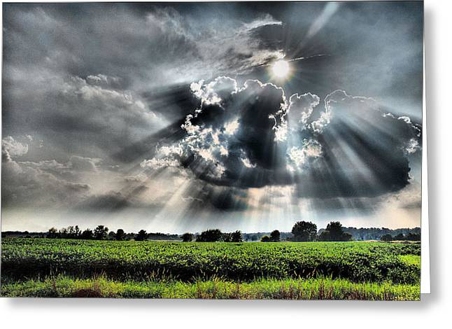 Lexington South Carolina Greeting Cards - Field Of Beams Greeting Card by Steven Richardson