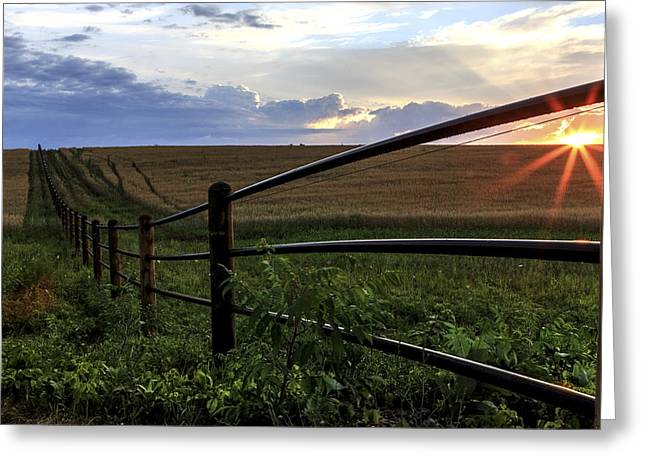 Sunrise Greeting Cards - Field of Dreams Greeting Card by Everet Regal