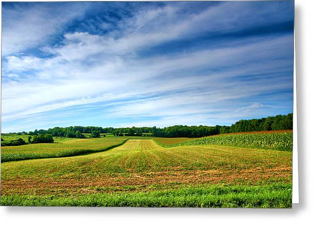 Finger Lakes Greeting Cards - Field of Dreams Two Greeting Card by Steven Ainsworth
